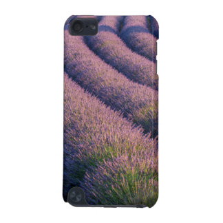 Rows of lavender in Provence iPod Touch 5G Case