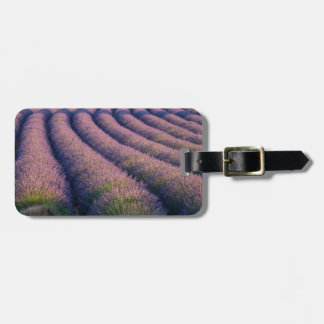 Rows of lavender in Provence Luggage Tag