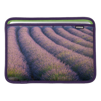 Rows of lavender in Provence MacBook Sleeve
