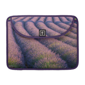 Rows of lavender in Provence Sleeves For MacBook Pro