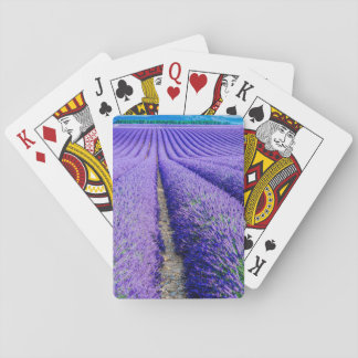 Rows of Lavender, Provence, France Poker Deck