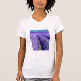 Rows of Lavender, Provence, France T-Shirt