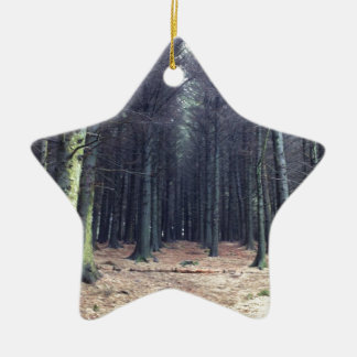 Rows of trees ceramic star decoration
