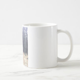 Rows of trees coffee mug