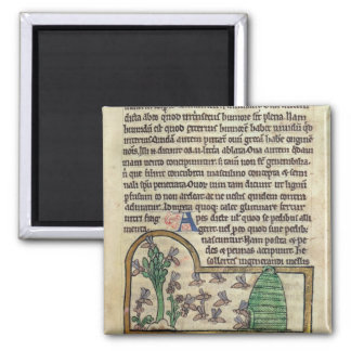 Roy Page of text with illustration of Square Magnet