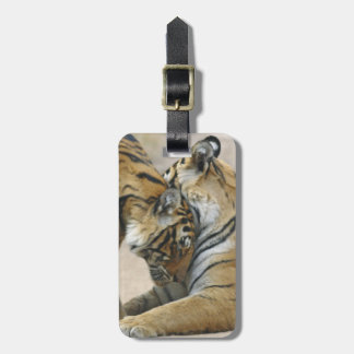 Royal Bengal Tiger and young ones - touching Bag Tag