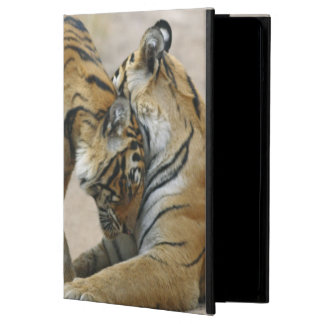 Royal Bengal Tiger and young ones - touching iPad Air Case