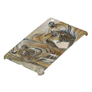 Royal Bengal Tiger and young ones - touching iPad Mini Cover