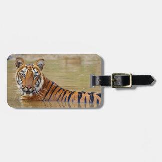 Royal Bengal Tiger at the waterhole Bag Tag