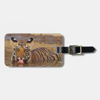 Royal Bengal Tiger cub, drinking water Bag Tag