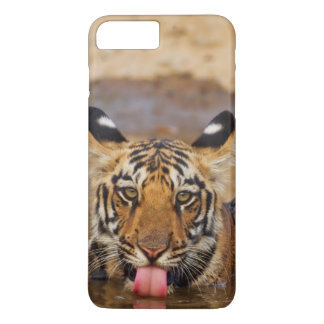 Royal Bengal Tiger cub, drinking water iPhone 8 Plus/7 Plus Case