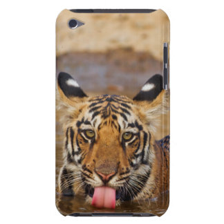 Royal Bengal Tiger cub, drinking water iPod Touch Case-Mate Case