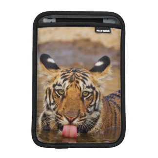 Royal Bengal Tiger cub, drinking water Sleeve For iPad Mini