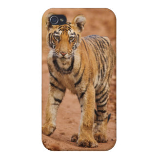 Royal Bengal Tiger cub on the move iPhone 4/4S Covers
