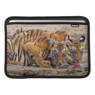 Royal Bengal Tiger cubs at the waterhole Sleeves For MacBook Air