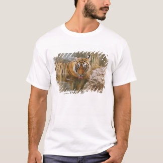 Royal Bengal Tiger drinking in the forest T-Shirt