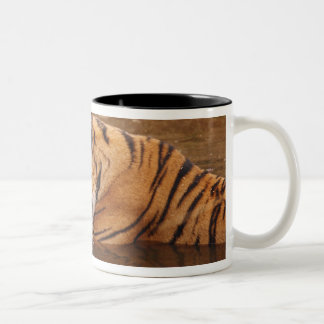 Royal Bengal Tiger drnking water in the jungle Two-Tone Coffee Mug