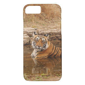 Royal Bengal Tiger in the jungle pond, 2 iPhone 8/7 Case