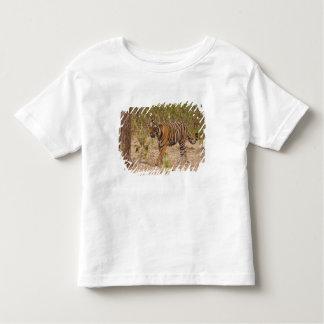 Royal Bengal Tiger moving around the bush, Toddler T-Shirt