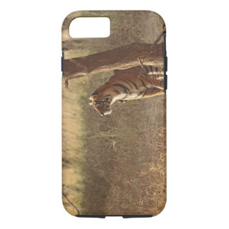 Royal Bengal Tiger on look out for prey, iPhone 8/7 Case