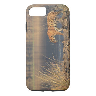 Royal Bengal Tiger on the move, Ranthambhor 2 iPhone 8/7 Case