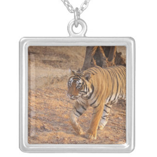 Royal Bengal Tiger on the move, Ranthambhor Silver Plated Necklace