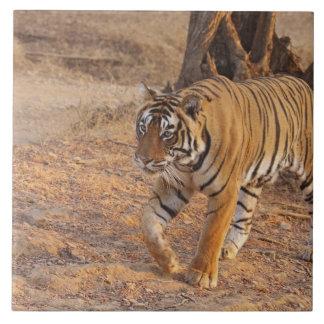 Royal Bengal Tiger on the move, Ranthambhor Large Square Tile