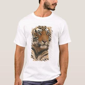 Royal Bengal Tiger on the rock, Ranthambhor T-Shirt