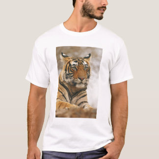 Royal Bengal Tiger on the rock, Ranthambhor T-Shirt