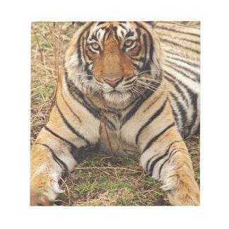 Royal Bengal Tiger, Ranthambhor National Park, Notepad