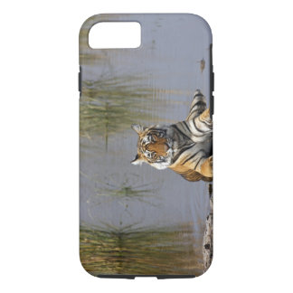 Royal Bengal Tiger sitting in the Rajbagh Lake, iPhone 8/7 Case