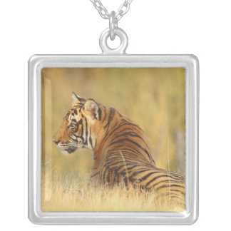 Royal Bengal Tiger sitting outside grassland, 2 Square Pendant Necklace