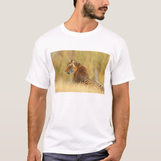 Royal Bengal Tiger sitting outside grassland, 2 T-Shirt