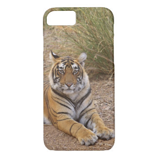 Royal bengal Tiger sitting outside grassland, iPhone 8/7 Case