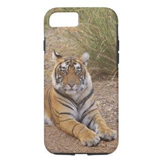 Royal bengal Tiger sitting outside grassland, iPhone 8/7 Case