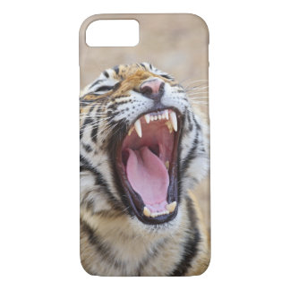 Royal Bengal Tiger yawning, Ranthambhor National iPhone 8/7 Case