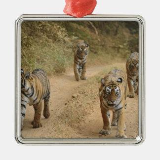 Royal Bengal Tigers on the track, Ranthambhor 4 Christmas Ornament