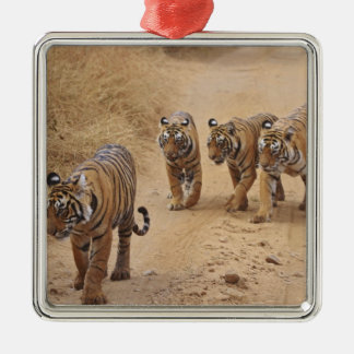 Royal Bengal Tigers on the track, Ranthambhor 8 Christmas Ornament