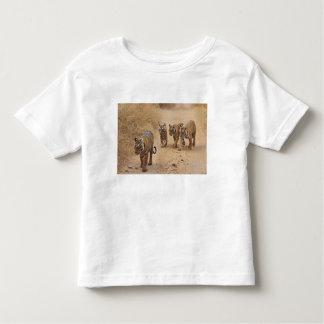 Royal Bengal Tigers on the track, Ranthambhor 8 Toddler T-Shirt