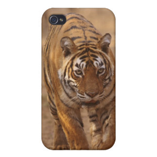 Royal Bengal Tigers on the track, Ranthambhor Case For The iPhone 4