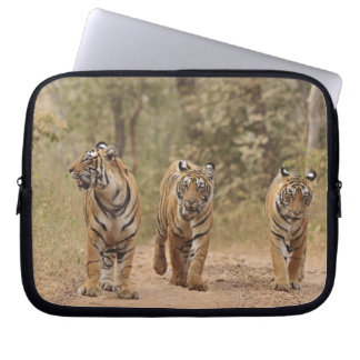 Royal Bengal Tigers on the track, Ranthambhor Laptop Sleeve