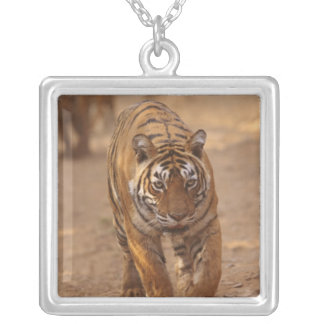 Royal Bengal Tigers on the track, Ranthambhor Silver Plated Necklace