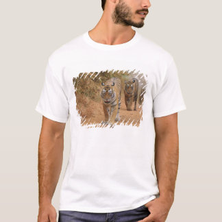 Royal Bengal Tigers walking along the track, T-Shirt