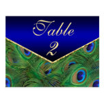 Royal Blue  Peacock Table Number Card