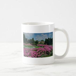 Royal Botanical Gardens at Kew, London, Englan Basic White Mug
