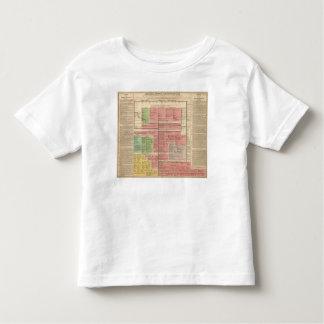Royal House of Brunswick Toddler T-Shirt