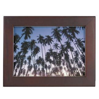 Royal Kupuva Palm Grove at Kaunakakai Keepsake Boxes