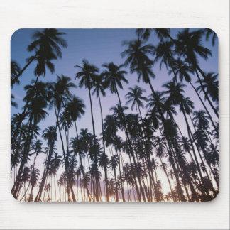 Royal Kupuva Palm Grove at Kaunakakai Mouse Mat