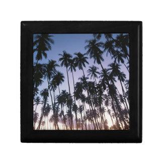 Royal Kupuva Palm Grove at Kaunakakai Small Square Gift Box