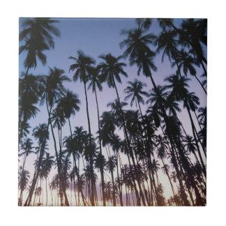 Royal Kupuva Palm Grove at Kaunakakai Tile